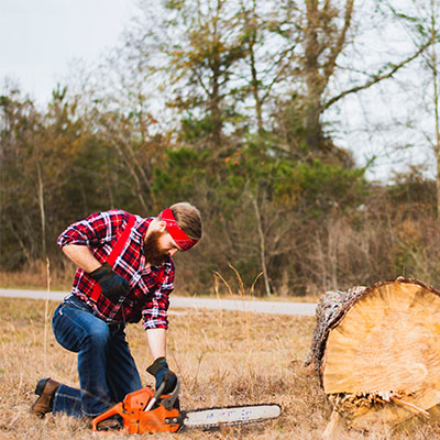 3 Best Small Gas Chainsaw Models For 2019