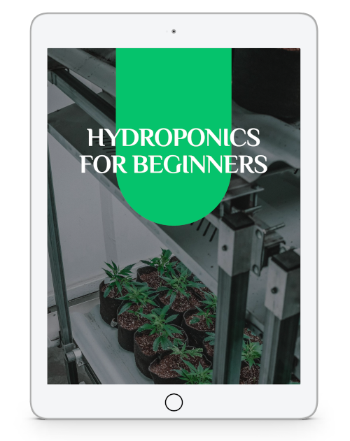 hydroponics for beginners ebook
